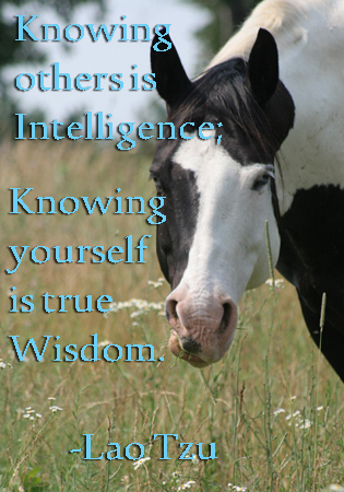 Knowing others is intelligence...