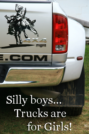 Silly boys..truck are for girls!