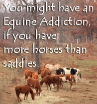 You might have an equine..