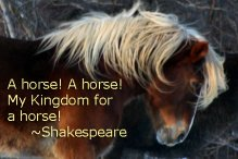 A horse! A horse!