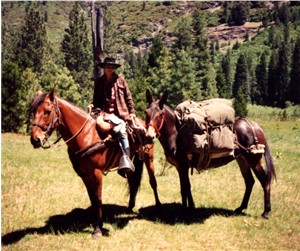 A horse pack trip in the mountains.