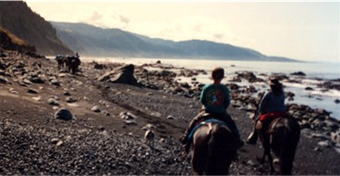 Carole and her grandson on their mules, with pack string up ahead.