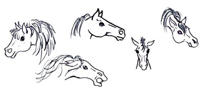 drawing a horse - the mane