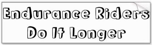'Endurance Riders do it Longer' bumper Sticker