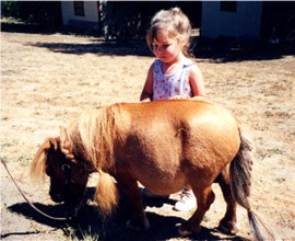 A fat horse is at equine founder risk