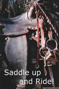 Saddle up...