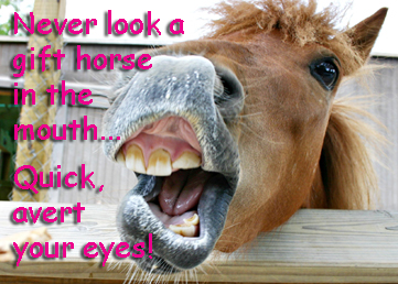 Never look a gift horse...