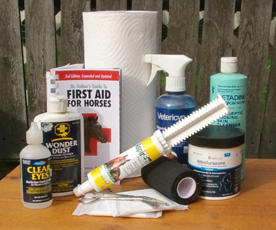 Build a 'better than store bought' horse first aid kit.