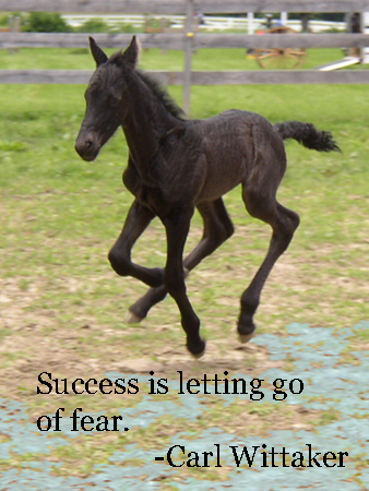 Success is letting go...