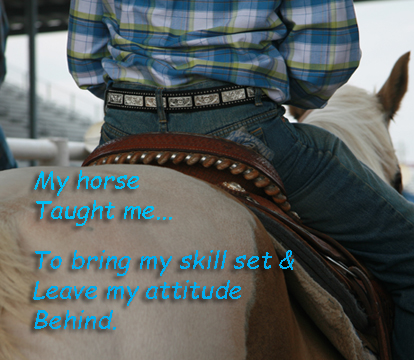 My horse taught me...