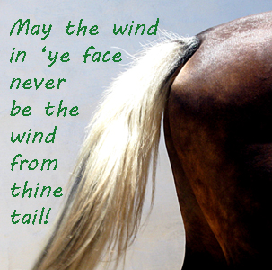 Maya the wind in 'ye face...