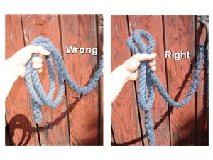 Right and wrong way to hold your horse's lead rope.