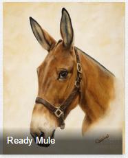 Equine Paintings