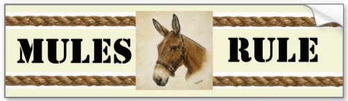 'Mules Rule' bumper sticker