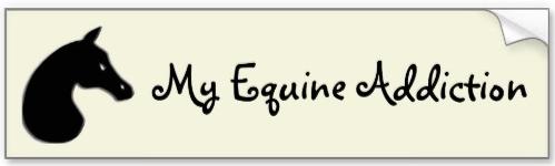 'My Equine Addiction' bumper sticker