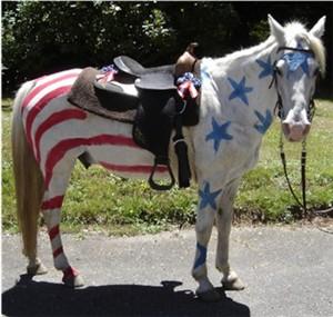 Patriotic horse Halloween costume...too cute!