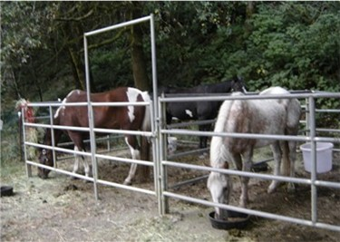 Equine camps supply the corrals, you supply the feed containers
