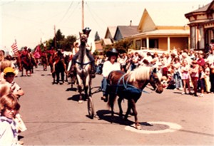A cart pulling pony on parade!