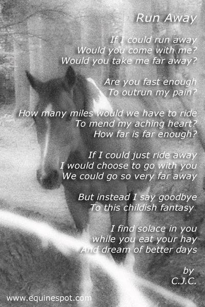 Run Away...A Horse Poem