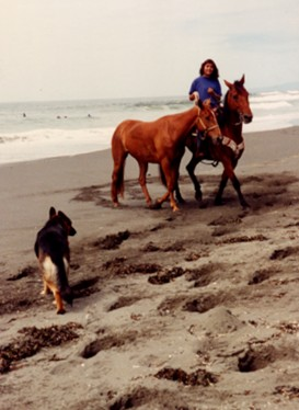 A deep sand workout for the horses