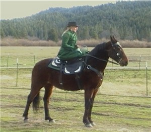 Sidesaddle with Heidi Graham