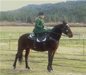 Sidesaddle with Heidi Graham