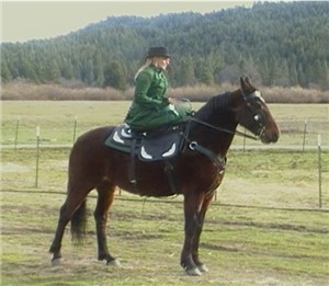 Sidesaddle rider in full dress