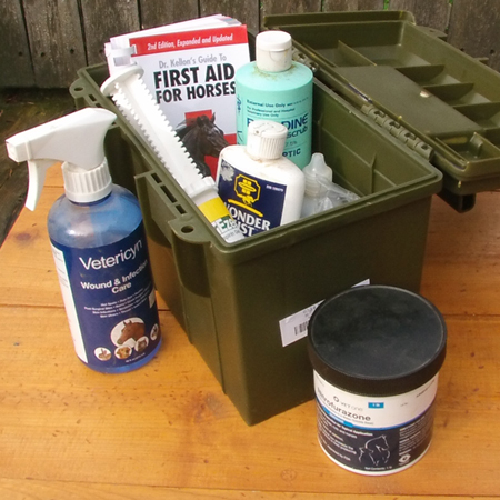 Ammo cans make great truck storage containers for your horse first aid kit.