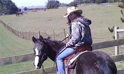 True horse stories - adventures on horseback