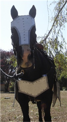 War horse halloween costume