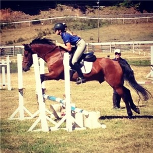 You can bet they'll be jumping at a horse club competition.