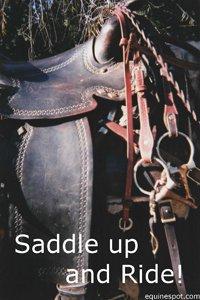 Saddle up...