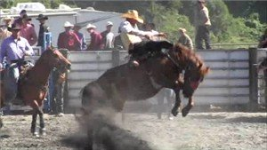 Local Rodeo's are often sponsored by horse clubs