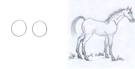 horse drawing step one