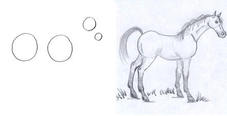 horse drawing step two