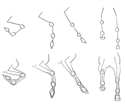 How to draw horses front legs part 2