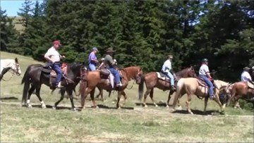 Meet other riders at your local horse clubs.