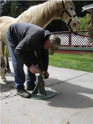 Horse shoeing is alot easier on a flat level surface!