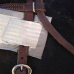 Face armor attached to bridle