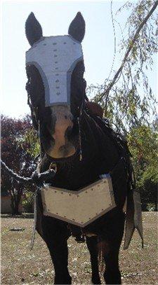 War horse halloween costume